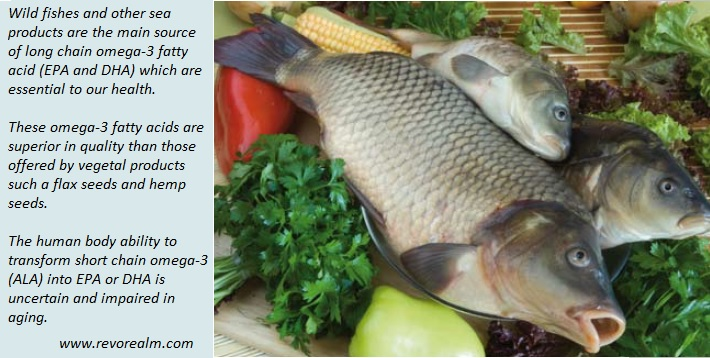 Always ask for wild fishes and be concerned about our oceans health because this is crucial for humain health!