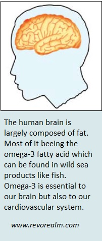 Our brain uses omega-3